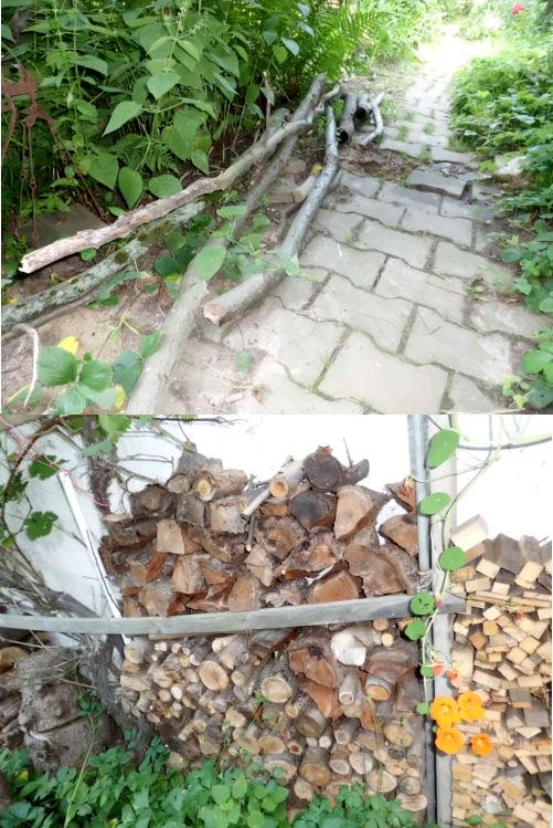 Kostenloses Brennholz